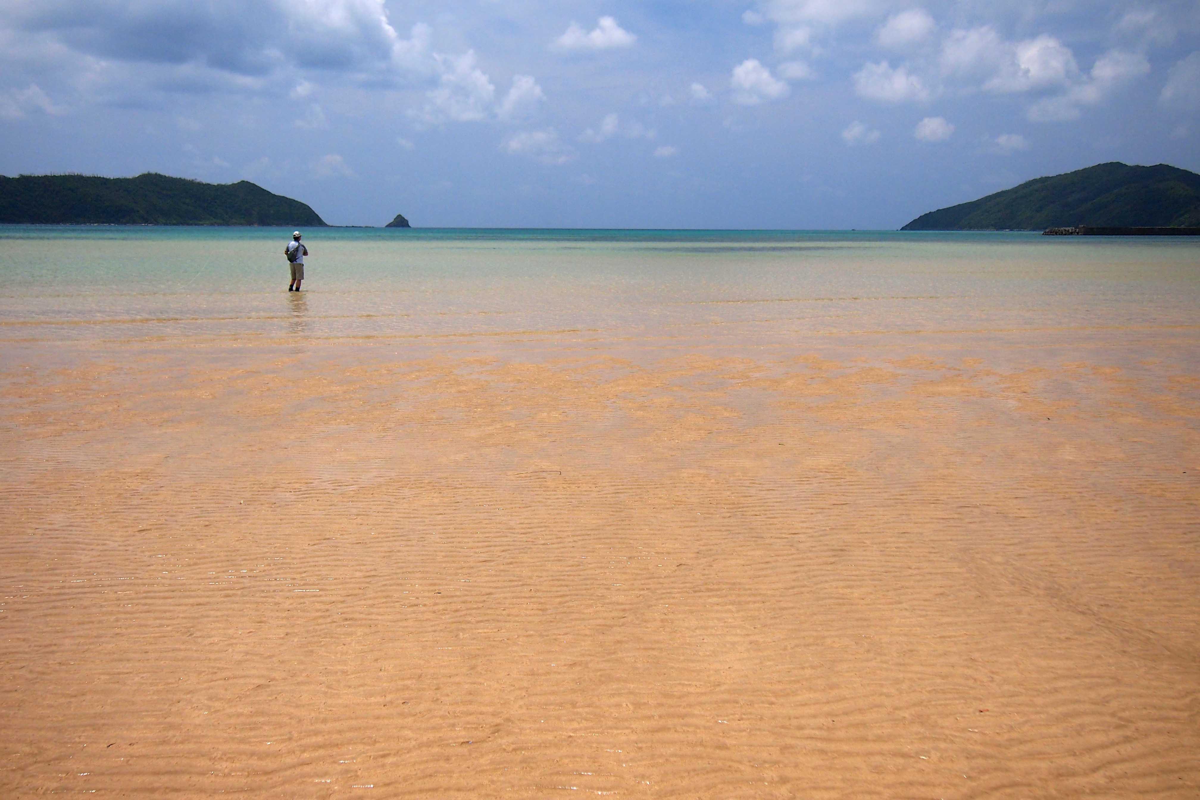奄美大島ツアー、ブログにアップしました